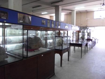 المتحف الجيولوجى المصرى بالمعادى