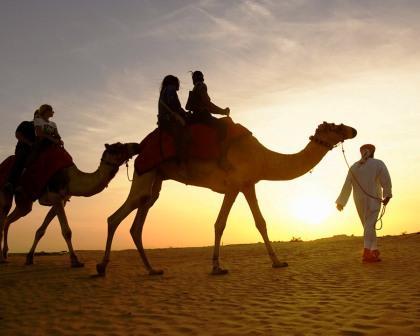 قافلة تسير فى صحراء المعادى